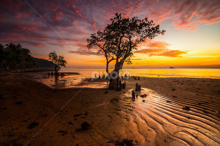 Nirwana Beachs at Dusk by Ade Noverzan - Landscapes Sunsets & Sunrises ( sunset, twilight, trees, beach, dusk )