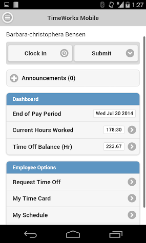 TimeWorksPlus Screenshot