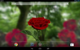 Screenshot of 3D Rose Live Wallpaper Free
