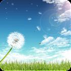 Dandelion under the sun icon