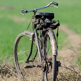 Bicycle by Deepak Goswami - Transportation Bicycles
