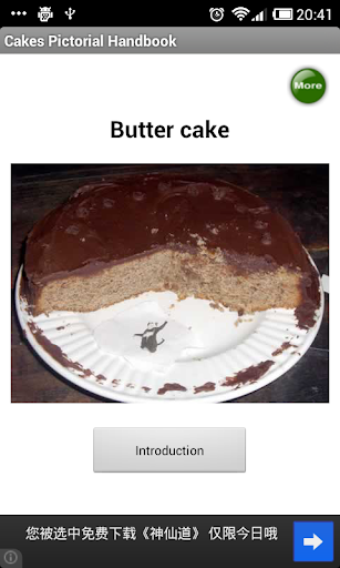 Cakes Pictorial Handbook