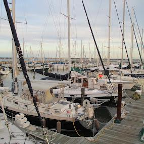 Docked by Tanya Washburn - Transportation Boats ( sailing, boats, moored, sails, docks )