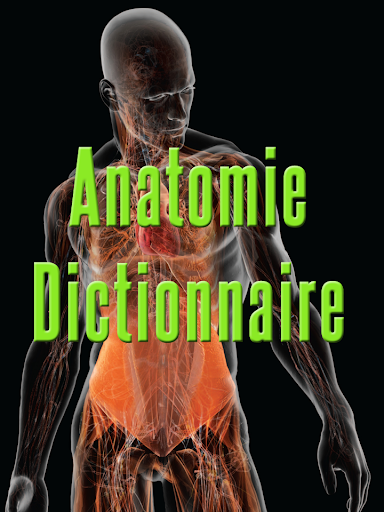 Anatomie Dictionnaire