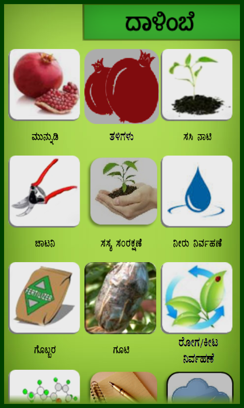 Pomegranate Kannada- screenshot