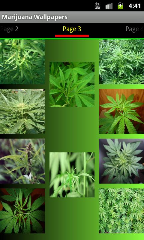 Weed Wallpapers and Pictures - screenshot