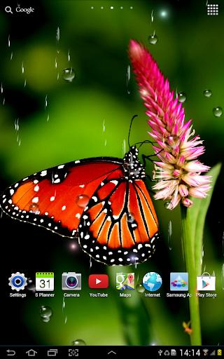 Rain Live Wallpaper 1.0.9 screenshots 13