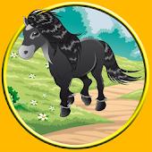 beautiful horses for kids