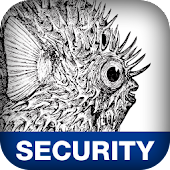 Network Security Assess