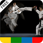 Martial Arts Tips - FREE