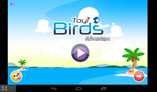 Toyi Birds Adventures
