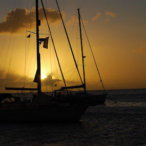 Sailboat at Sunset by Dave Clark - Transportation Boats ( sunset, tropical, sail, boat,  )