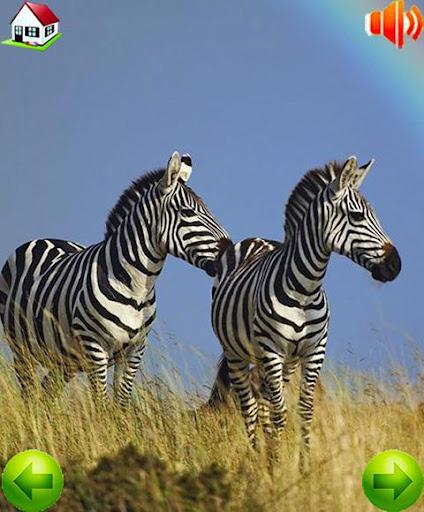 【免費教育App】可愛的動物拼音-APP點子