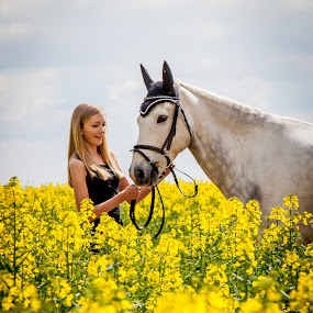 by Sheena True - Animals Horses