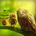 Julgamento Owls Live Wallpaper icon