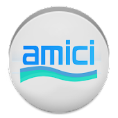 Amici Pool Calculator