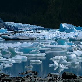 The melt by Anna Tatti - Nature Up Close Water (  )