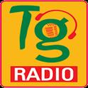 Telangana Radio icon