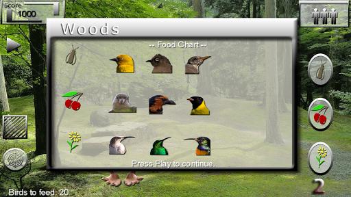 玩休閒App|A tiny Miracle - Feed My Birds免費|APP試玩