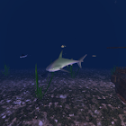 Ocean Floor 3D Wallpaper icon