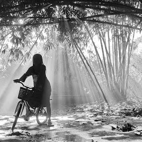 by DODY KUSUMA  - Black & White Street & Candid ( black and white, b&w, landscape, , #GARYFONGDRAMATICLIGHT, #WTFBOBDAVIS )