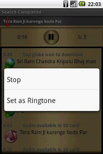 Shri Ram Temple - screenshot thumbnail