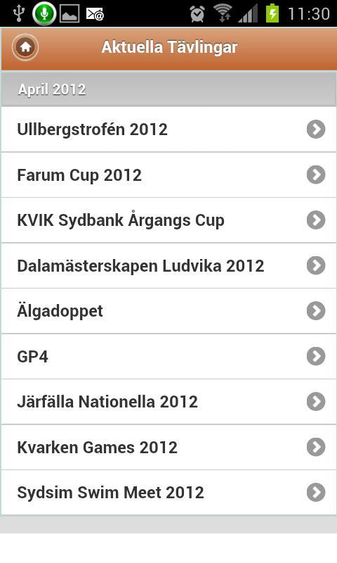 LiveTiming- screenshot