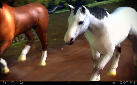 Horses 3D Live Wallpaper v1.0