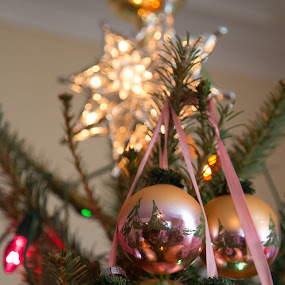 Ornaments and Star  by Danny Andreini - Public Holidays Christmas