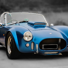 Elegant Cobra by Michael Lucchese - Transportation Automobiles ( automobiles, selective color, blue, black and white, cars, nikon, classic, photography, cobra, land, device, transportation,  )