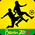 Braxin 2014 icon