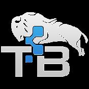 TechnoBuffalo