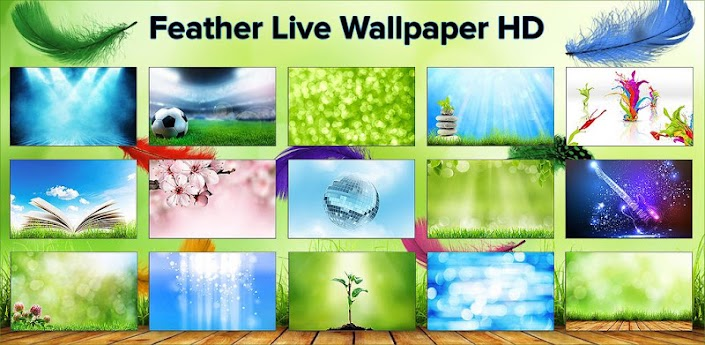 Feather Live Wallpaper HD Full