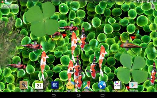 3D Aquarium Live Wallpaper