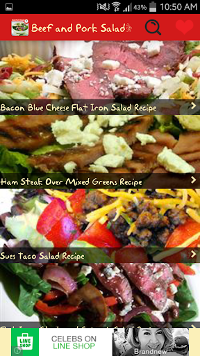 Beef and Pork Salads Recipes