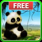 Panda Live Wallpaper icon