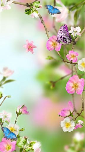 花卉動態壁紙