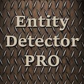 Entity Detector Spirit Box