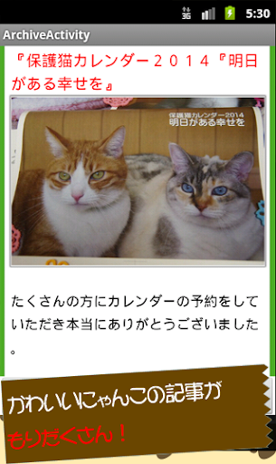 【免費生活App】ぬこ速里親‐猫の里親探しアプリ-全国迷い猫まとめリーダー-APP點子