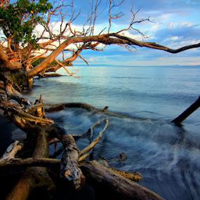 Dramatis by Erwan Setyawan - Landscapes Beaches