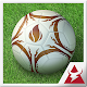 World Football Cup Real Soccer v1.0.0
