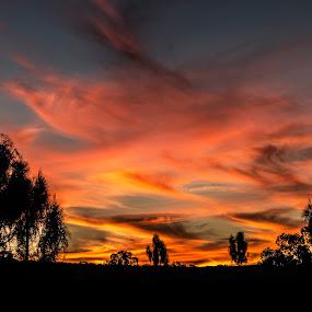 Sunset near Kings Canyon by Matt Simner - Landscapes Sunsets & Sunrises ( sunset, australia, northern territory, kings canyon )