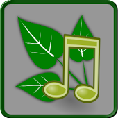 Nature Sounds Relax and Sleep APK Descargar