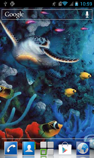 Sea turtle LWP