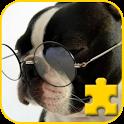 Fancy JigSaw  Pet dog icon