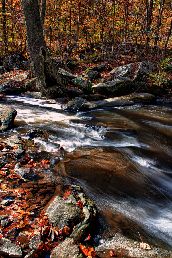 Brandywine Creek  by Andrew Seymour - Landscapes Waterscapes ( water, coatesville, hdr, pa, hibernia park, chester county, long exposure, late fall, wagontown road )