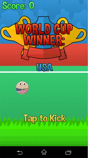 Flappy Cup Winner USA
