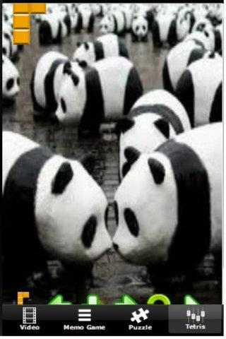 Panda Running World