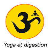 Yoga anti-stress et digestion