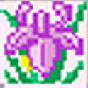 AndMajak icon
